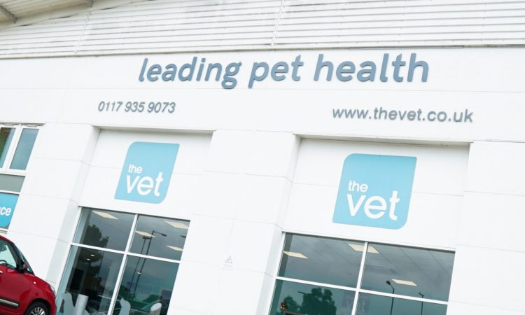 Medivet 24 Hour Hendon Emergency Vets Hendon