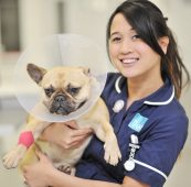 Registered Veterinary Nurse – Morden